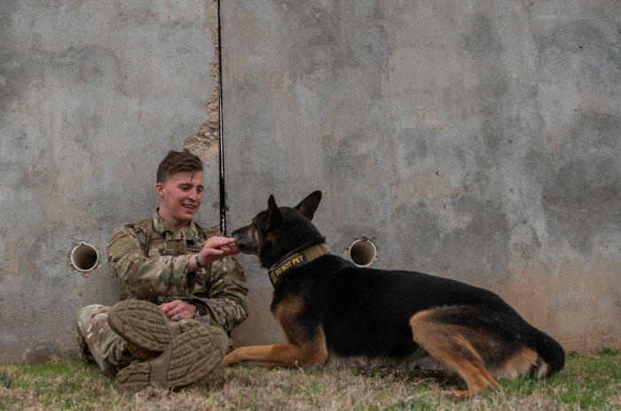 military-dogs-8