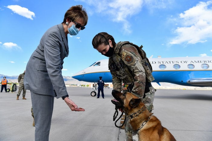 military-dogs-9